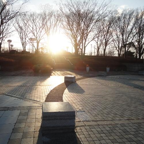 kyokusenpark2017-square.JPG